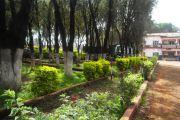 Aménagement de l'espace vert dans la ville de Mbouda
